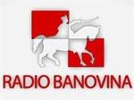 RADIO BANOVINA LIGHT