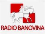 RADIO BANOVINA TURBO